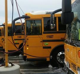 fleet_buses